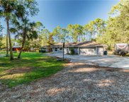 27317 Green Willow Run, Wesley Chapel image
