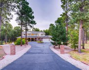 17415 Charter Pines Drive, Monument image