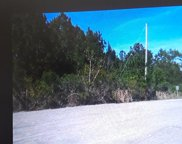 TBD Ron McNair Blvd., Myrtle Beach image