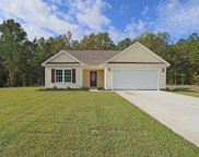 57 Rivercrest Pl., Georgetown image