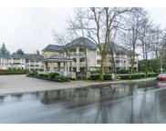 22020 49 Avenue Unit 334, Langley image