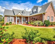 1013 Natural Springs Way, Leland image