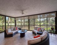 80 Cypress View Dr, Naples image