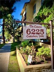 6225     Canterbury Drive   305 Unit 305, Culver City image