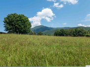 Lot 2 Shelby Dr., Sevierville image