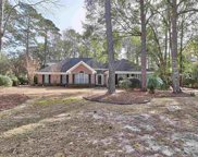 219 Black Duck Rd., Pawleys Island image