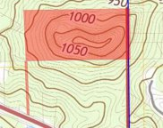 Highway 231 Unit Parcel 010.000, 20 ac in Section 25, T12S, R1E., Oneonta image