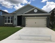 16436 Centipede Street, Clermont image