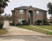 6334 Borg Breakpoint Drive, Spring image