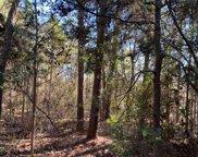 TBD Deerwood Drive Lane, Harleton image