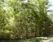Lot 15 Hopeland St., Pawleys Island image