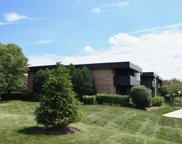 1295 North Sterling Avenue Unit 106, Palatine image