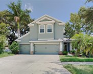 10111 Caraway Spice Avenue, Riverview image
