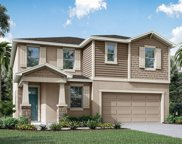 2960 Angelonia Thorn Way Unit LOT 460, Clermont image
