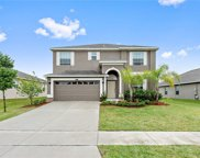 4828 Havilland Drive, Mount Dora image