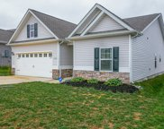 608 Tines Dr, Shelbyville image