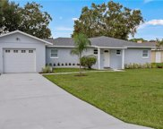 31836 Tropical Shores Drive, Tavares image