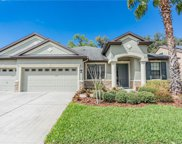20014 Outpost Point Drive, Tampa image
