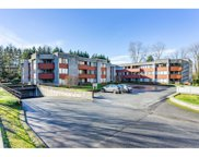 9270 Salish Court Unit 102, Burnaby image