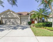 10513 Castleford Way, Tampa image