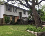 11808 Buggy Whip Trl, Austin image