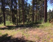 27635 Stagecoach Road, Conifer image