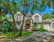 7513 Yardley Way, Tampa image