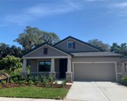 11224 Paddock Manor Avenue, Riverview image