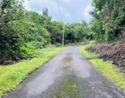88-2709 PAPA HOMESTEAD RD, CAPTAIN COOK image