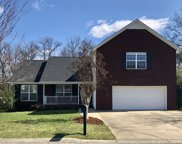 1234 Baker Creek Dr, Spring Hill image