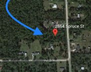 2864 Spruce Street, Bunnell image