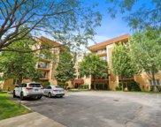 6400 W Belle Plaine Avenue Unit #207, Chicago image