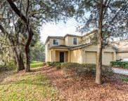 10935 Kensington Park Avenue, Riverview image