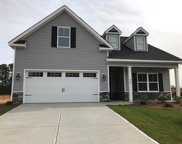 307 Long Needle Ct, Greenwood image