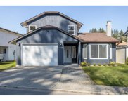 1228 River Drive, Coquitlam image