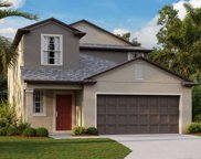 13322 Willow Bluestar Loop, Riverview image