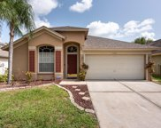 10266 Oasis Palm Drive, Tampa image