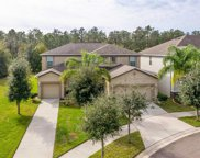 12133 Streambed Drive, Riverview image