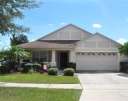 11121 Rodeo Lane, Riverview image