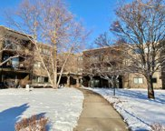 4120 Parklawn Avenue Unit #330, Edina image
