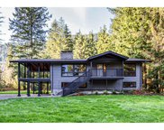 12807 Stave Lake Road, Mission image