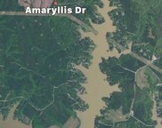 Amaryliss Dr, Sparta image