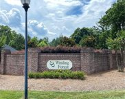 120 Crooked Branch  Way, Troutman image