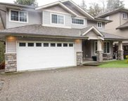 13233 239b Street, Maple Ridge image
