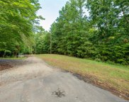 17608 Green Hill  Road, Charlotte image