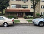 426 S Lombard Avenue Unit #201, Oak Park image