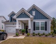 14225  Goldenrod Trace Road, Charlotte image