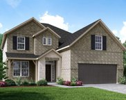 10803 Cloaked Wing Court, Cypress image