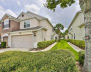 10221 Red Currant Court, Riverview image