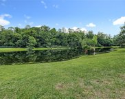 14913 Knotty Pine Place, Tampa image